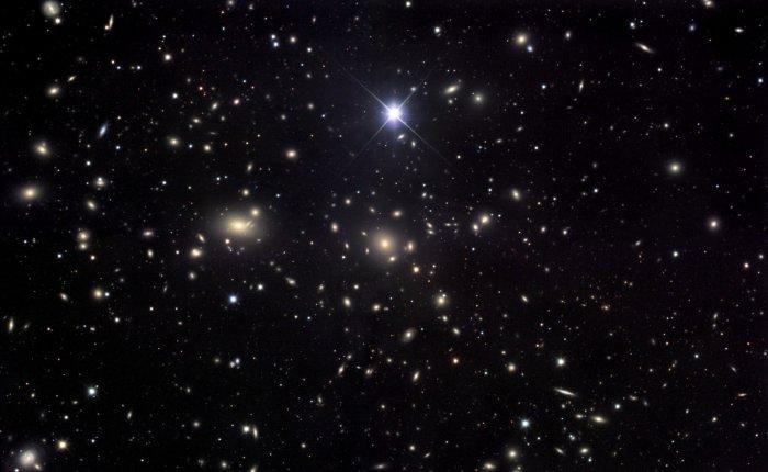 STAR.. that FrightenedMe